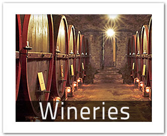 chianti wine tasting and chianti winery tours